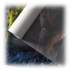 Canson® - Infinity - Papier Cristal (Glassine) - 40 g/m²